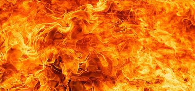 Крым полыхает: за 3 дня полуостров горел больше 100 раз