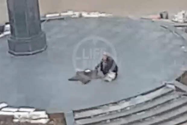 Женщина приготовила еду на Вечном огне в Подмосковье и попала на видео