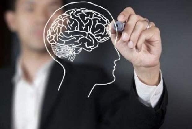17 простых упражнений для развития памяти и интеллекта.
