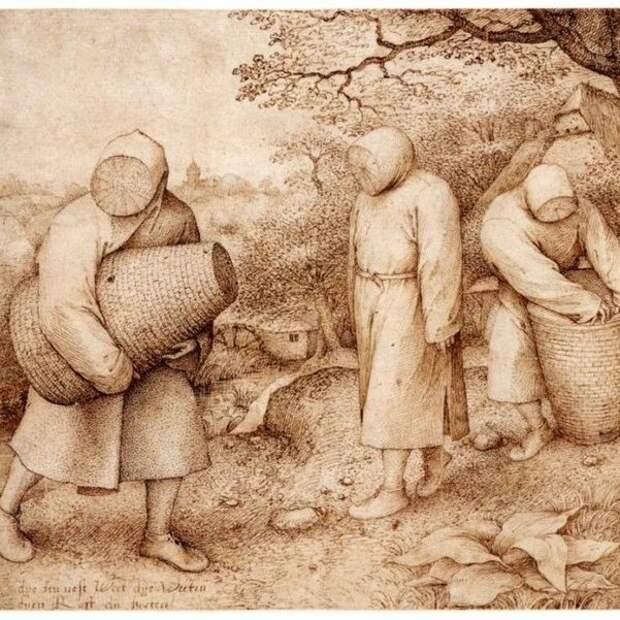 Средневековый пчеловод оказался криповее чумного доктора