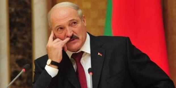 Лукашенко дал совет протестующим