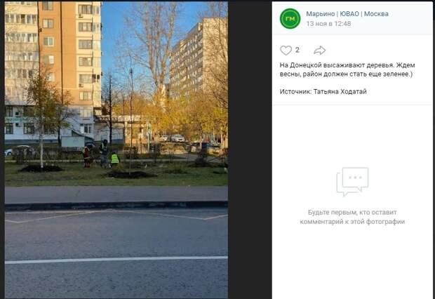 Фото дня: озеленение на Донецкой