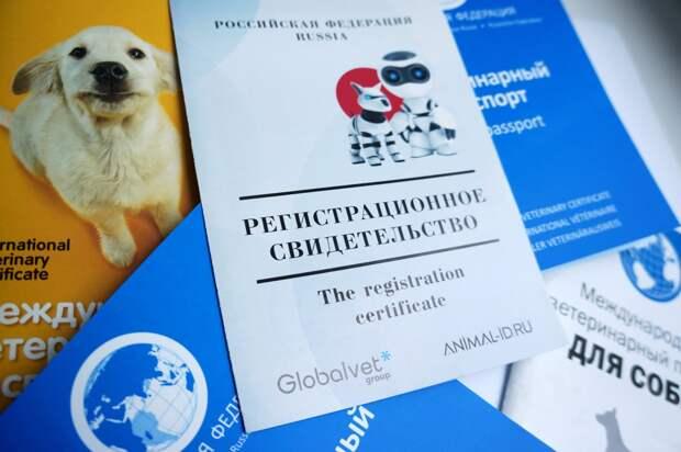 В правительстве собираются ввести обязательную платную регистрацию домашних животных