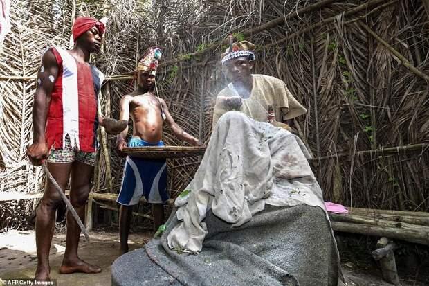 Кровавое воспитание: жизнь внутри тайных общин Сьерра-Леоне полна извращений иболи