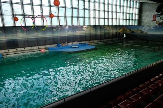 Старый бассейн более чем 40-летней постройки, давно дышит на ладан.