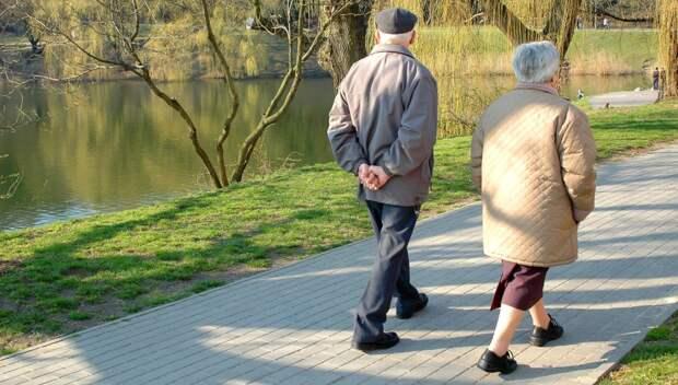 Лечебная дозированная ходьба терренкур: что это, что означает, маршрут
