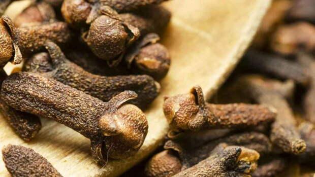 Сухая гвоздика - пряность здоровья. 5 причин жевать бутончик гвоздики каждый день
