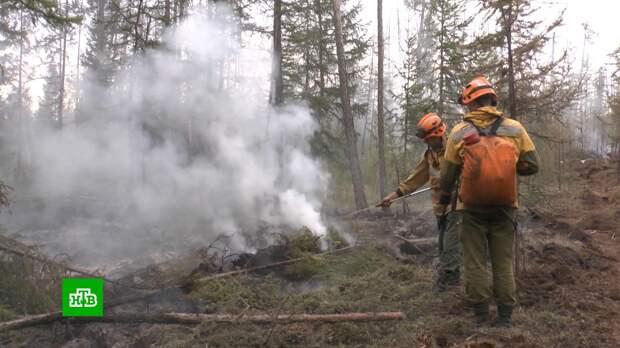 В якутском нацпарке «Ленские столбы» локализовали несколько пожаров