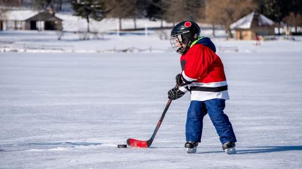 Четыре хоккейных коробки получит Удмуртия в этом году