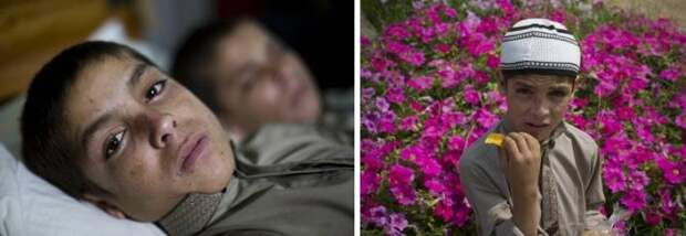 Странная болезнь двух братьев, паралич с наступлением ночи