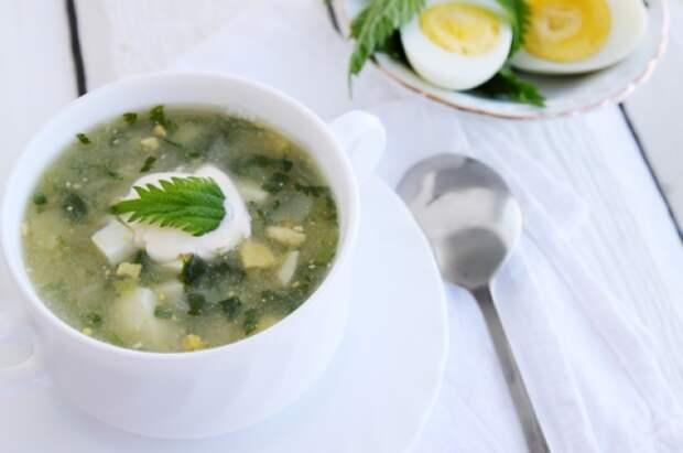 Первая зелень. Простые дачные блюда из крапивы и зелёного лука