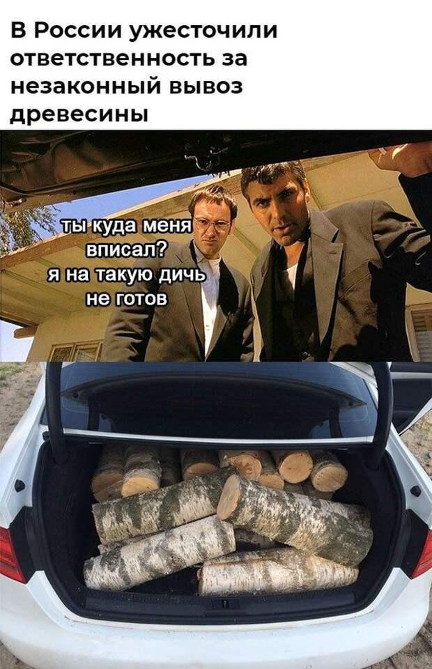 Незаконный вывоз древесины