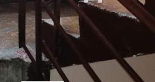 В доме на Сормовской по просьбе жителей навели порядок на лестничной площадке