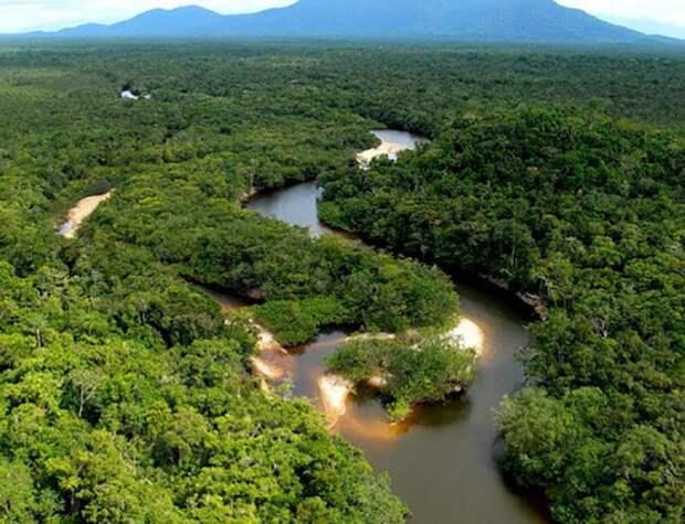 Благодаря современным технологиям стало возможным исследовать ранее недоступные районы Амазонки.