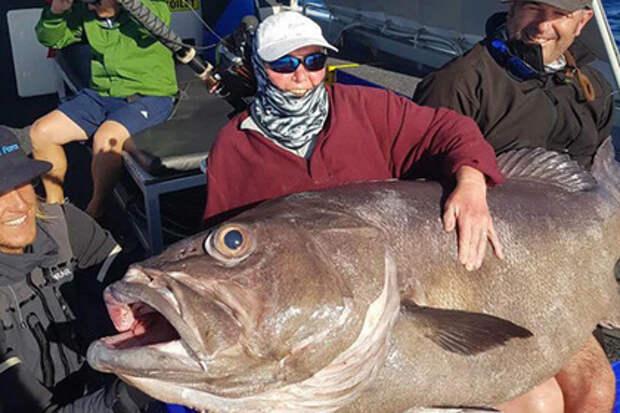 Старушка поймала рыбу размером с себя и решила кормить ей сына рыбалка, Австралия
