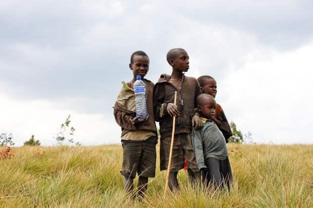 Свыше 100 тысяч детей в эфиопском штате Тыграй могут умереть от голода