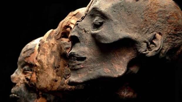 В XVII—XVIII веках в Европе стало модно всё, что было связано с древним Египтом. Дошло до того, что люди измельчали куски мумий и употребляли их как лекарство, веря, что они могут излечить от всех болезней исторические факты, история, факты, человечество