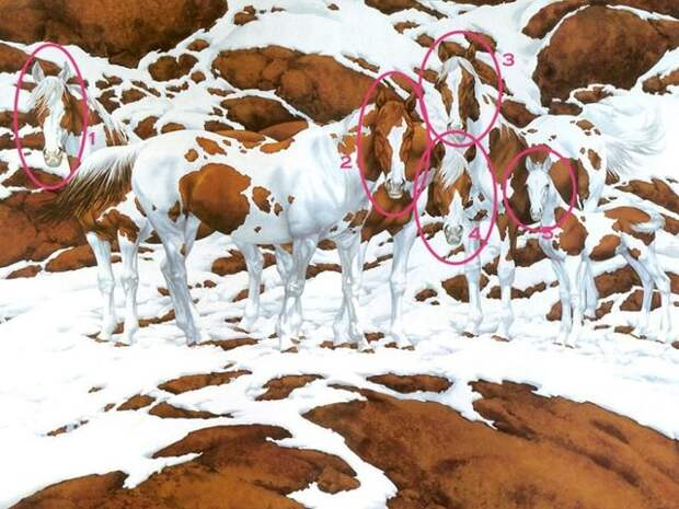 Сколько лошадей ты видишь на картине? Загадка, которая лишила покоя весь Интернет!