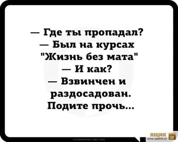 В России возобновили борьбу с пьянством.  Некрасивые женщины негодуют...