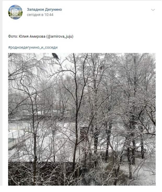 Фото дня: снежное утро в Западном Дегунине