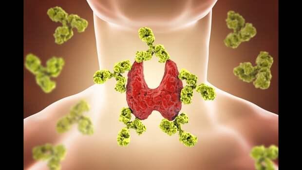 Вот 12 самых популярных болезней щитовидной железы. 90% из них - незаметны...