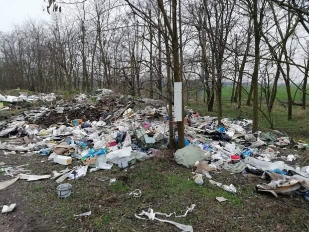 Про мусорный коллапс в Краснодаре мусор, факты, экология