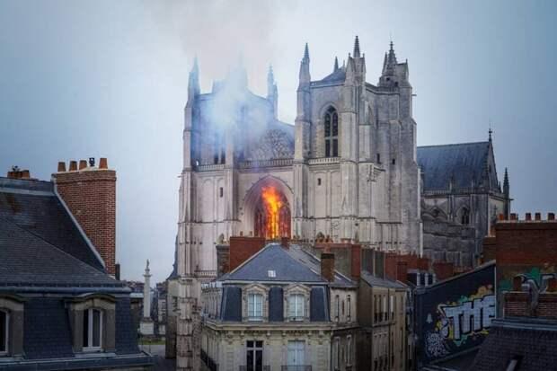 Угадаете, зачем мигрант поджег во Франции Собор Петра и Павла?