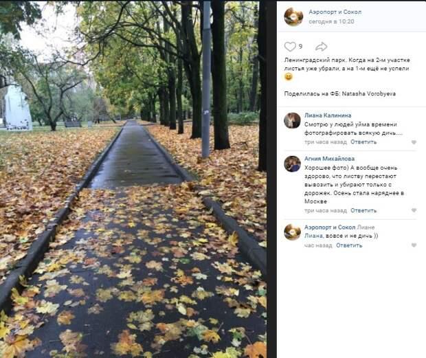 Фото дня: в Ленинградском парке «открылся» портал в другое время года