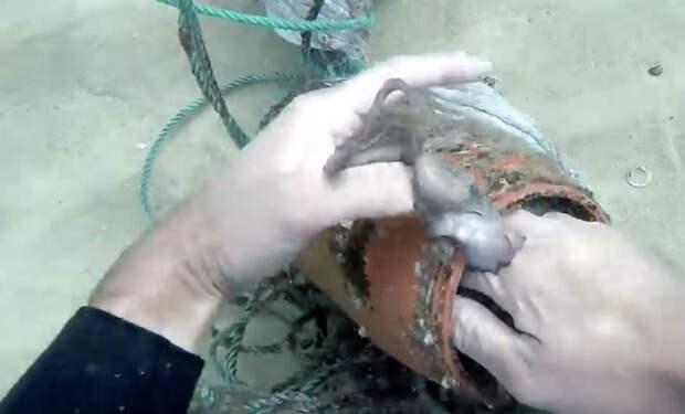 Водолаз с металлоискателем погрузился в реку: поиск монет на дне в песке