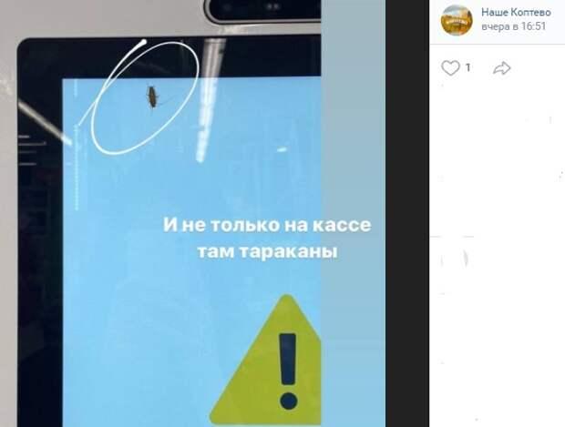 Усатый «консультант» напугал посетителей магазина на Новопетровской