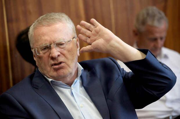 Жириновский заявил о необходимости приостановить авиасообщение с Турцией