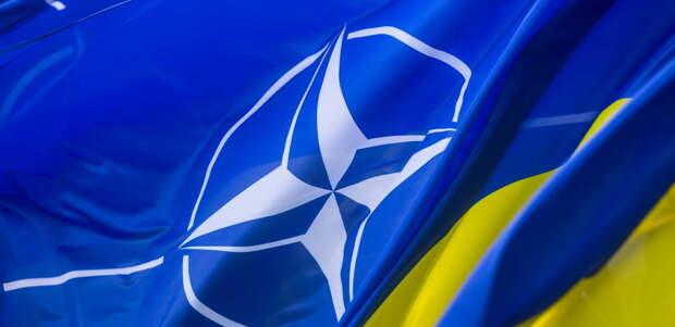 ВСУ решили научить офицеров НАТО материться