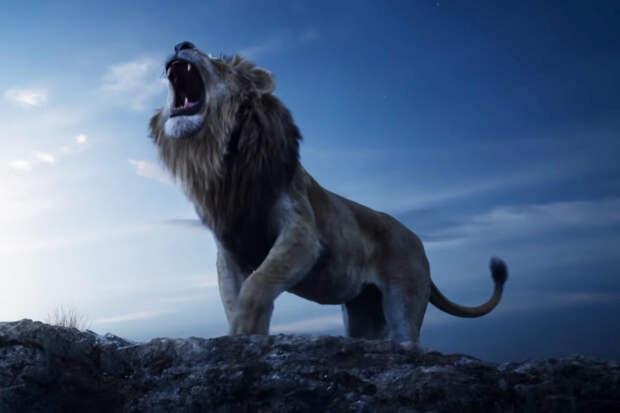 «Король лев»: Это фиаско, кабан