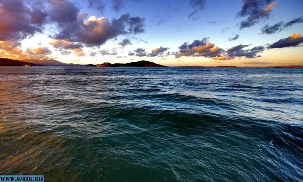 Ученые не могут объяснить происхождение гигантских следов на дне Тихого океана