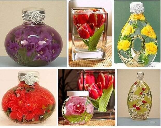 Сохраняем цветы с помощью глицерина