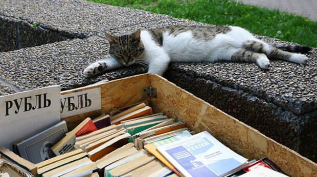 В Ростове после реконструкции открылся книжный развал