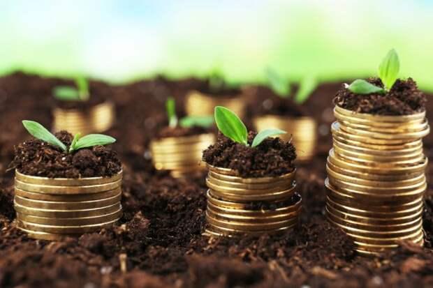 Плюсы безотвальной обработки почвы