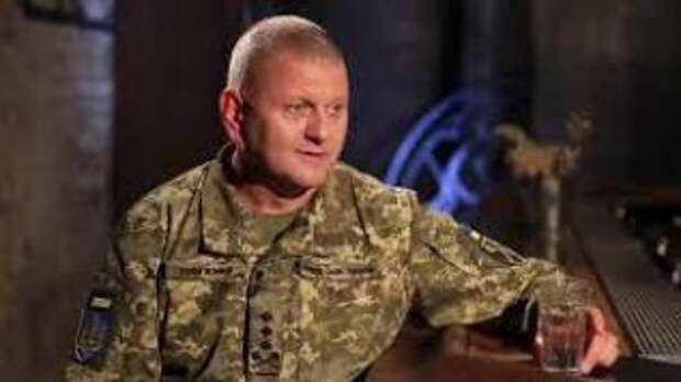 Хочу проехать на танке по Арбату и Красной площади, - Главком ВСУ