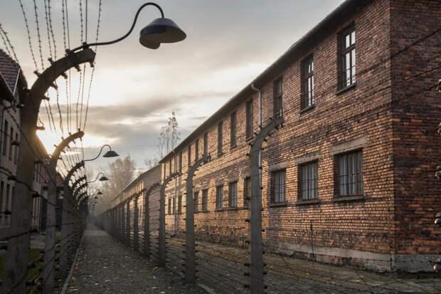 Опрос американцев: Холокост устроили евреи