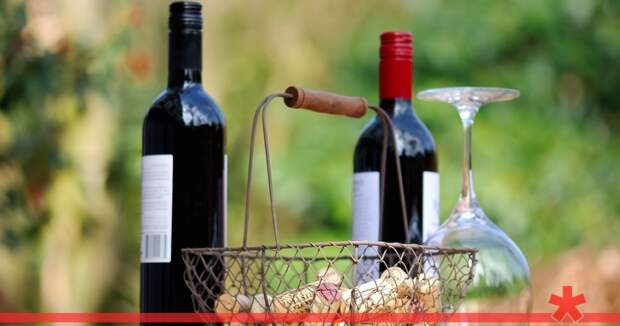 Севастопольские виноделы рассказали, как повышение акцизов повлияет на цены