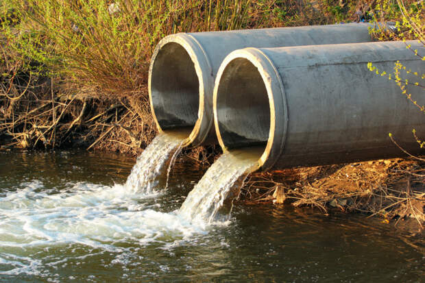 Сочинский «Водоканал» загрязнял почву биоотходами