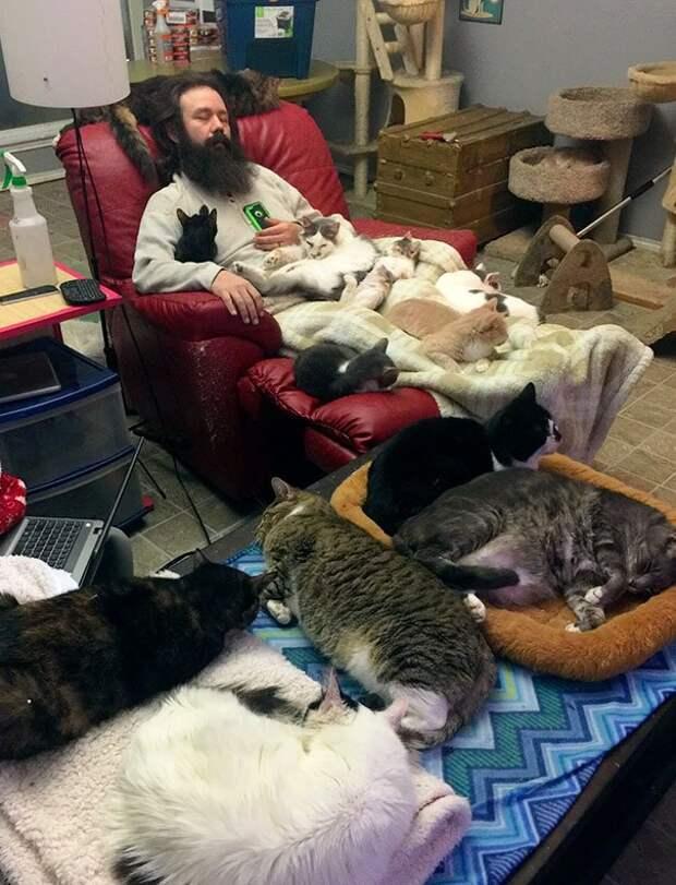 То, что не продается за деньги: откровения волонтеров в приютах для животных