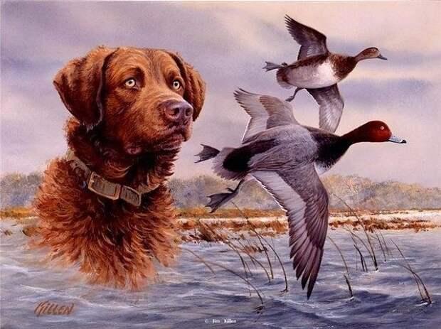 Собачья смерть....    Влад Костромин (Михалыч)