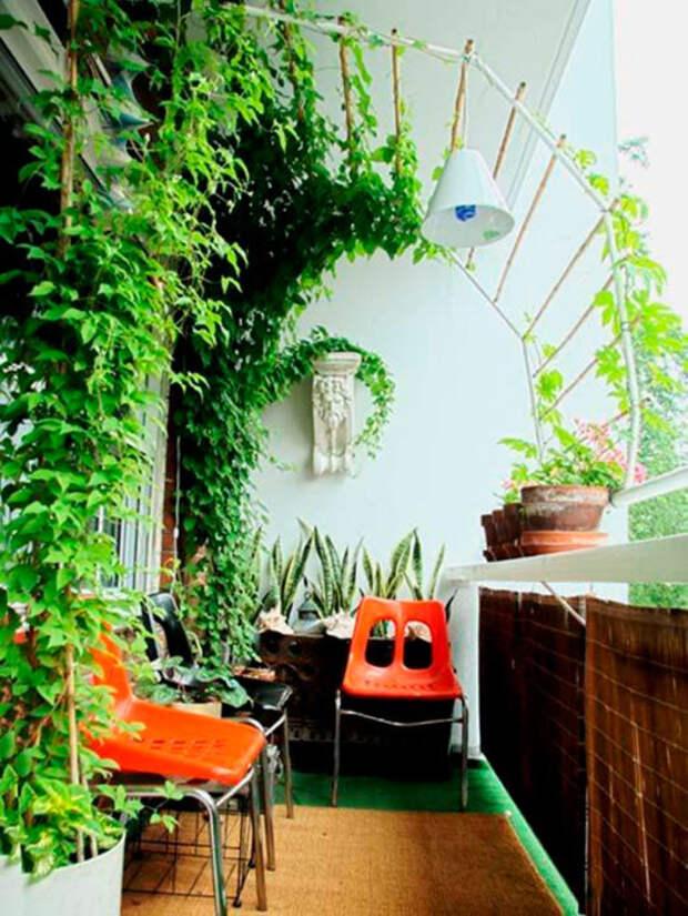 Металлический каркас для вертикального озеленения небольшой лоджии.