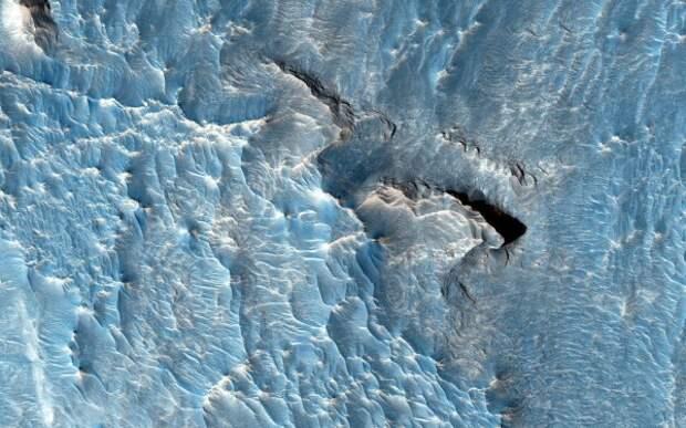 NASA скрывает наличие жизни на Марсе?