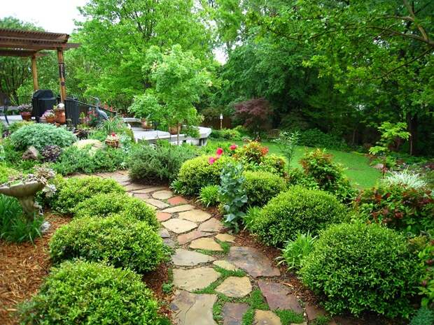 Оформление небольшого дачного участка предоставляет больше свободы в размещении декоративных цветов и растений.
