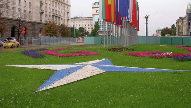 Эмблема и флаги стран-членов НАТО в Софии, Болгария. Архив