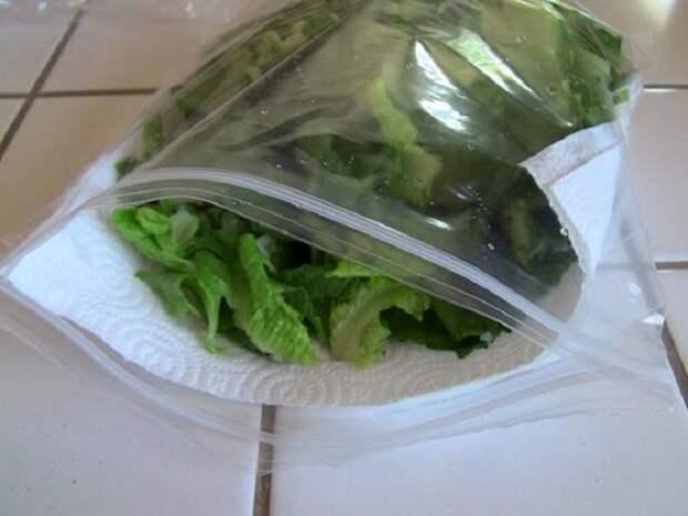 Упакуйте листья салата вместе с полотенцем в пакет на защелке. / Фото: zen.yandex.ru