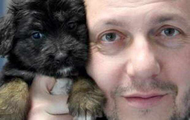Ветеринар из Польши построил шикарную деревню для собак