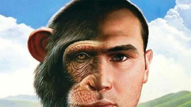Опыты советского ученого по скрещиванию человека с обезьяной